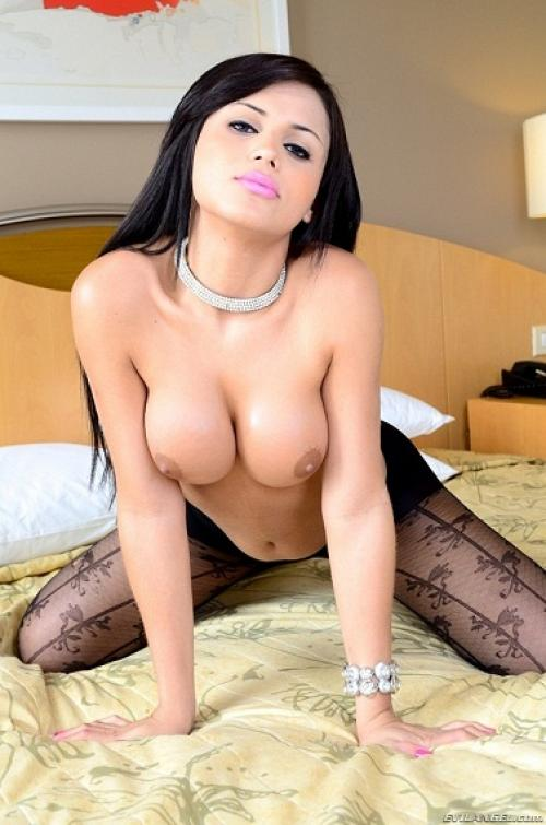 one night stands trans escort